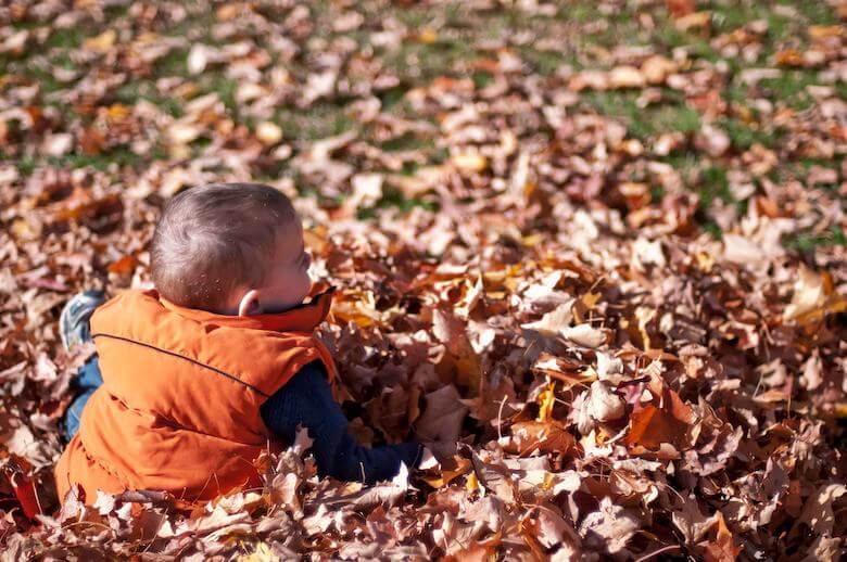 child in pile of leaves - image for article on informal learning in early childhood preschool years